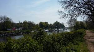 Boats on Ouse 8-5-16
