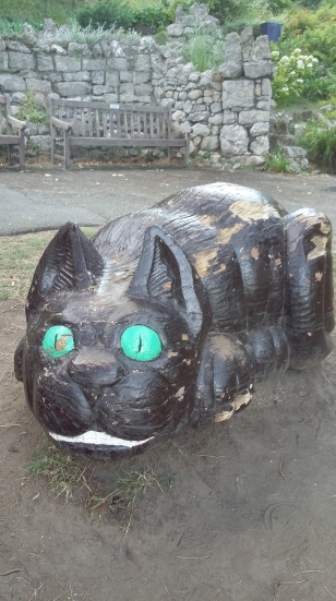 Another Cheshire Cat